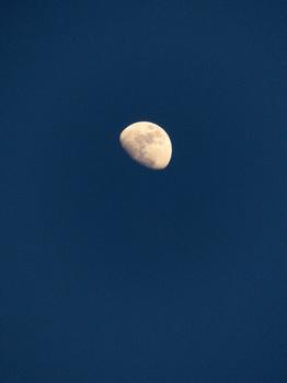 311this-moon.jpg