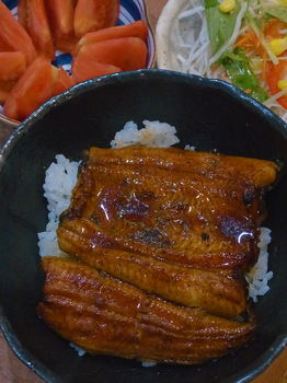 bowl-of-rice-toped-with-grilled-eel.jpg