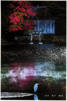 zen-nichi-sharen.jpg